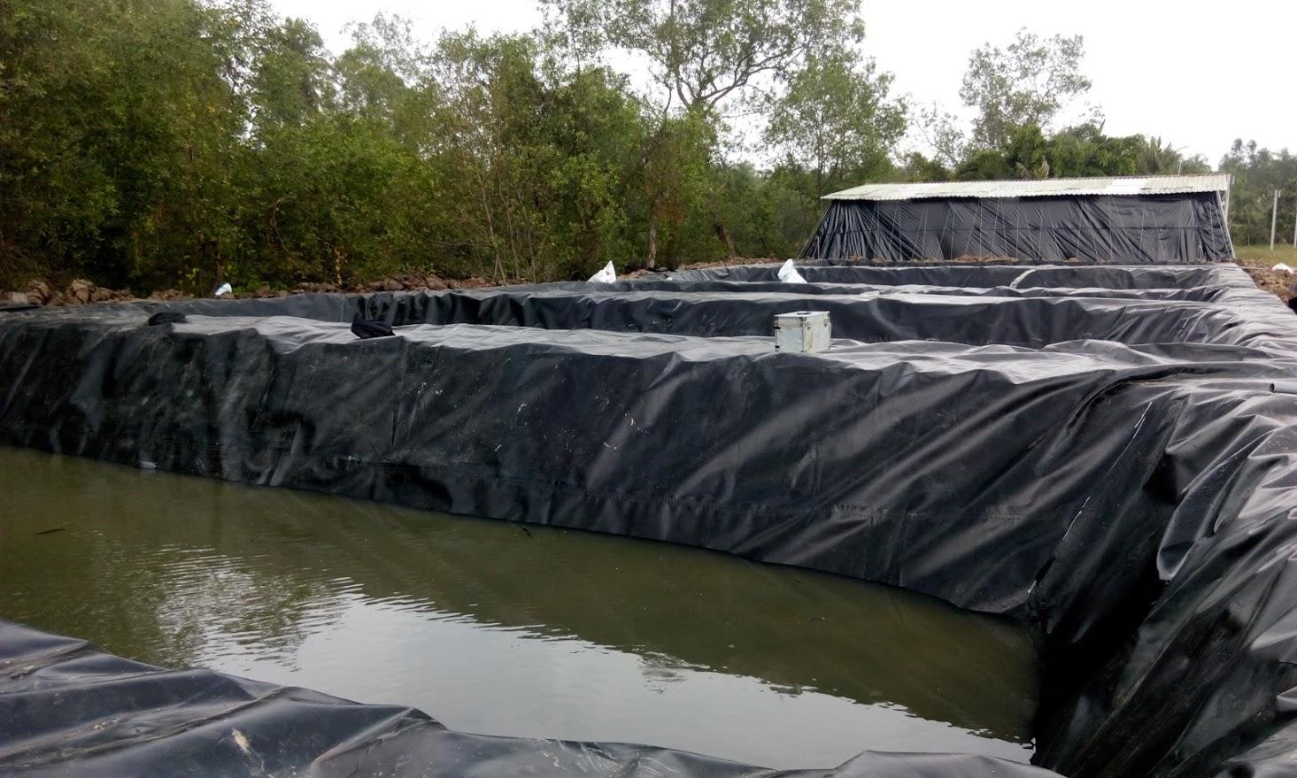 Bạt Lót Hồ Chứa Nước Nuôi Tôm, Nuôi Cá, Bạt Nhựa HDPE Lót Ao Chống Thấm Yên Bái