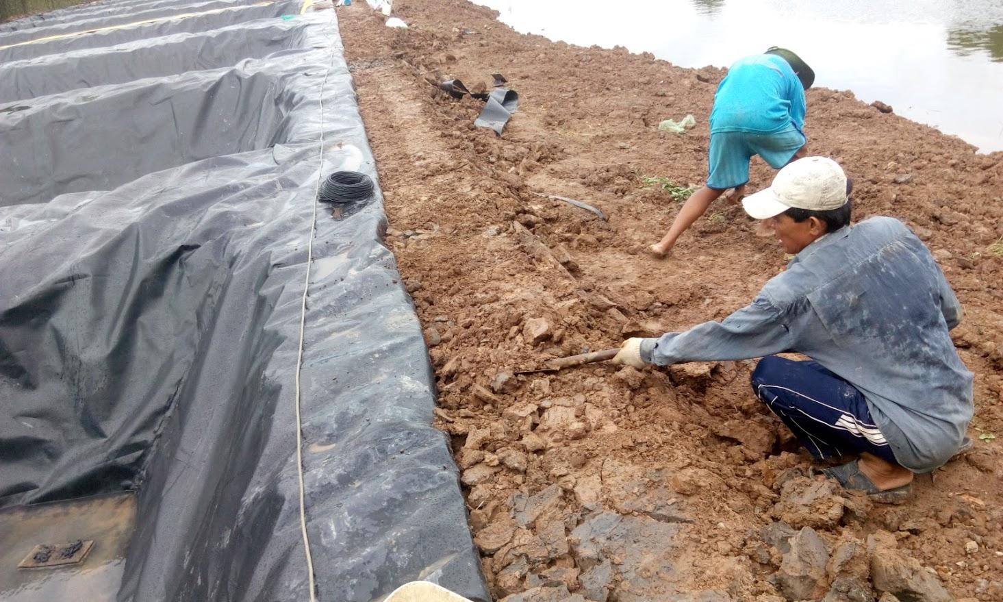 Bạt Lót Hồ Nuôi Tôm Long An, Bạt Nhựa HDPE Lót Ao Tôm Long An Củ Chi Hốc Môn