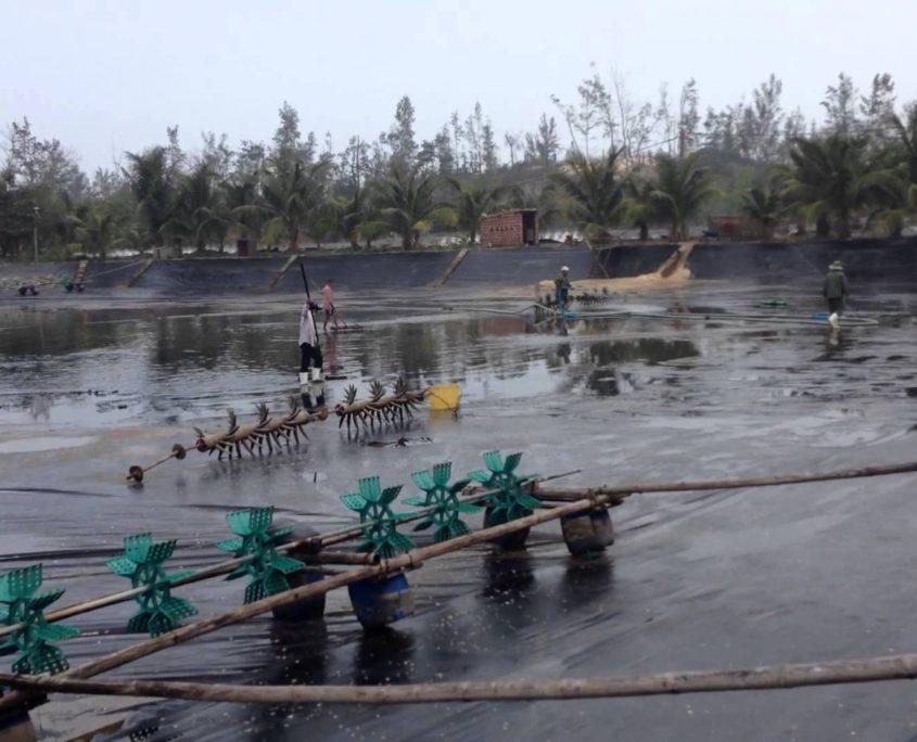 Bạt Lót Hồ Chứa Nước Nuôi Tôm, Nuôi Cá, Bạt Nhựa HDPE Lót Ao Chống Thấm Trà Vinh