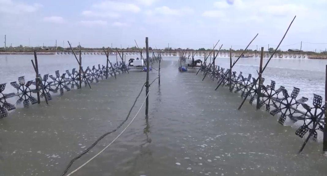Bạt Lót Hồ Chứa Nước Nuôi Tôm, Nuôi Cá, Bạt Nhựa HDPE Lót Ao Chống Thấm Sơn La