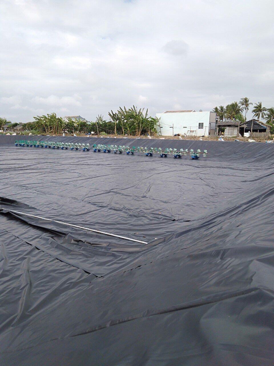 Bạt Trải Ao Nuôi Tôm Giá Rẻ - Màng HDPE Lót Hồ Nuôi Tôm, Nuôi Chồng Thủy Sản
