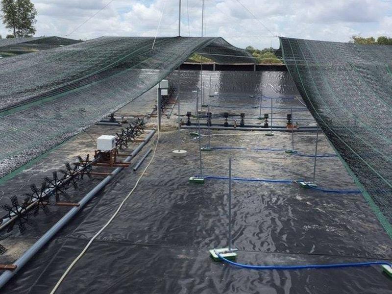Bạt Lót Hồ Chứa Nước Nuôi Tôm, Nuôi Cá, Bạt Nhựa HDPE Lót Ao Chống Thấm Hà Tĩnh