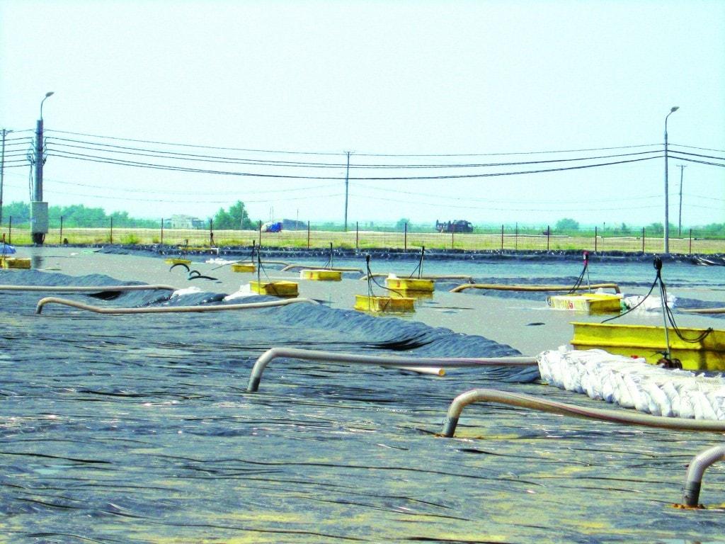 Bạt Lót Hồ Chứa Nước Nuôi Tôm, Nuôi Cá, Bạt Nhựa HDPE Lót Ao Chống Thấm Thanh Hóa