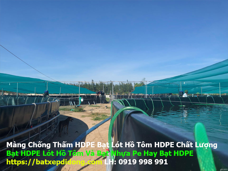 Địa Chỉ Bán Bạt Lót Hồ Chứa Nước Giá Rẻ Tại Củ Chi, Bạt HDPE Lót Ao Chứa Nước Nuôi Cá