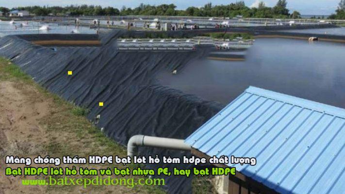 Bạt Lót Hồ Chứa Nước Nuôi Tôm, Nuôi Cá, Bạt Nhựa HDPE Lót Ao Chống Thấm Vĩnh Phúc